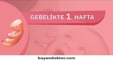 Photo of 1. Hafta Gebelik – Hafta Hafta Hamilelik0 (0)