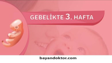 Photo of 3. Hafta Gebelik – Hafta Hafta Hamilelik0 (0)
