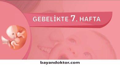Photo of 7. Hafta Gebelik – Hafta Hafta Hamilelik0 (0)