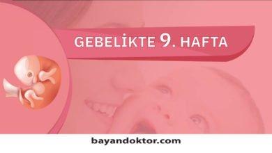 Photo of 9. Hafta Gebelik – Hafta Hafta Hamilelik0 (0)