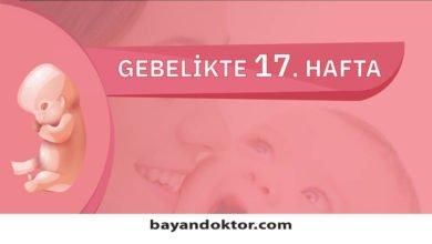 Photo of 17. Hafta Gebelik – Hafta Hafta Hamilelik0 (0)