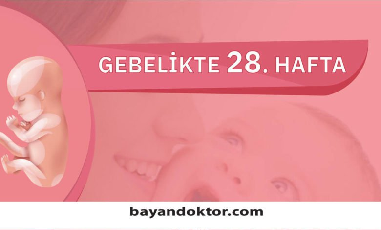 28. Hafta Gebelik – Hafta Hafta Hamilelik