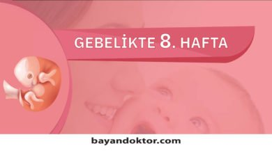Photo of 8. Hafta Gebelik – Hafta Hafta Hamilelik0 (0)