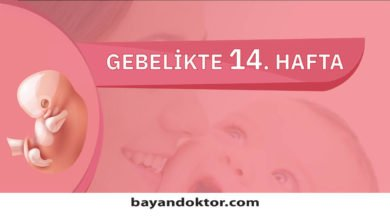 Photo of 14. Hafta Gebelik – Hafta Hafta Hamilelik0 (0)